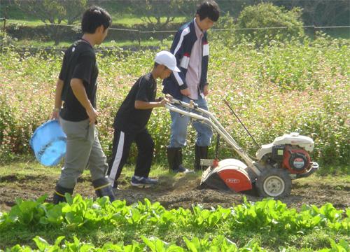 野菜の植え付け体験