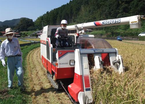 米、野菜、果樹の収穫体験