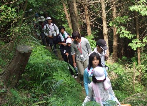 山歩き(きのこ採り)